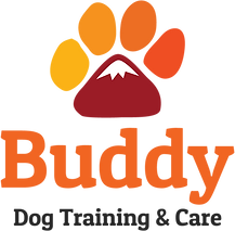 buddy-dogcare-logo-color.png