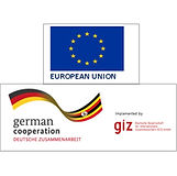 giz combined logo.jpg