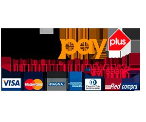 webpay-logo.png