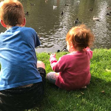 Feeding the ducks