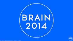 Brain2014