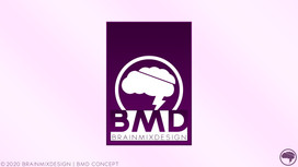 BMD Concept 2