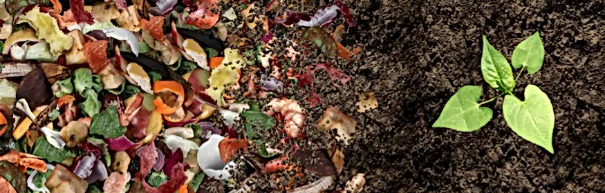 compost-composted-soil-cycle-composting-