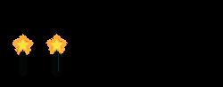 rising stars logo 4.png