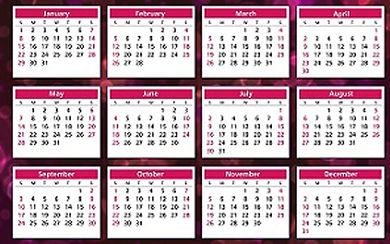 Alure Beauty Schedule