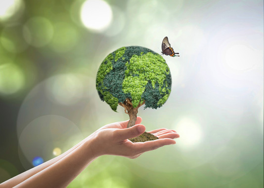 Sustainability - First steps