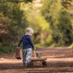 Little boy with cart