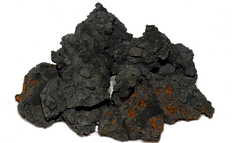 Bio Sludge Dried no background.png