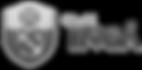 site-logo-sv_edited.png