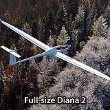 Diana2-FullSize.800.jpg