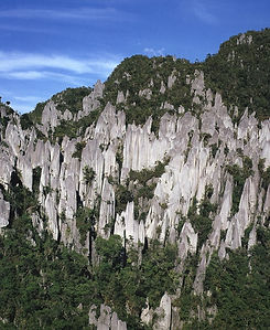 sarawak-borneo-backyard-Mulu-Pinnacles1.