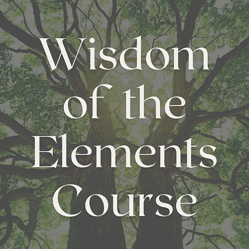 Wisdom of the Elements Course