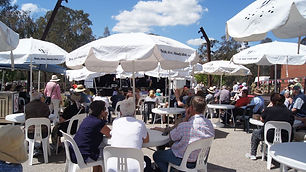 Wangaratta Jazz & Blues Festival