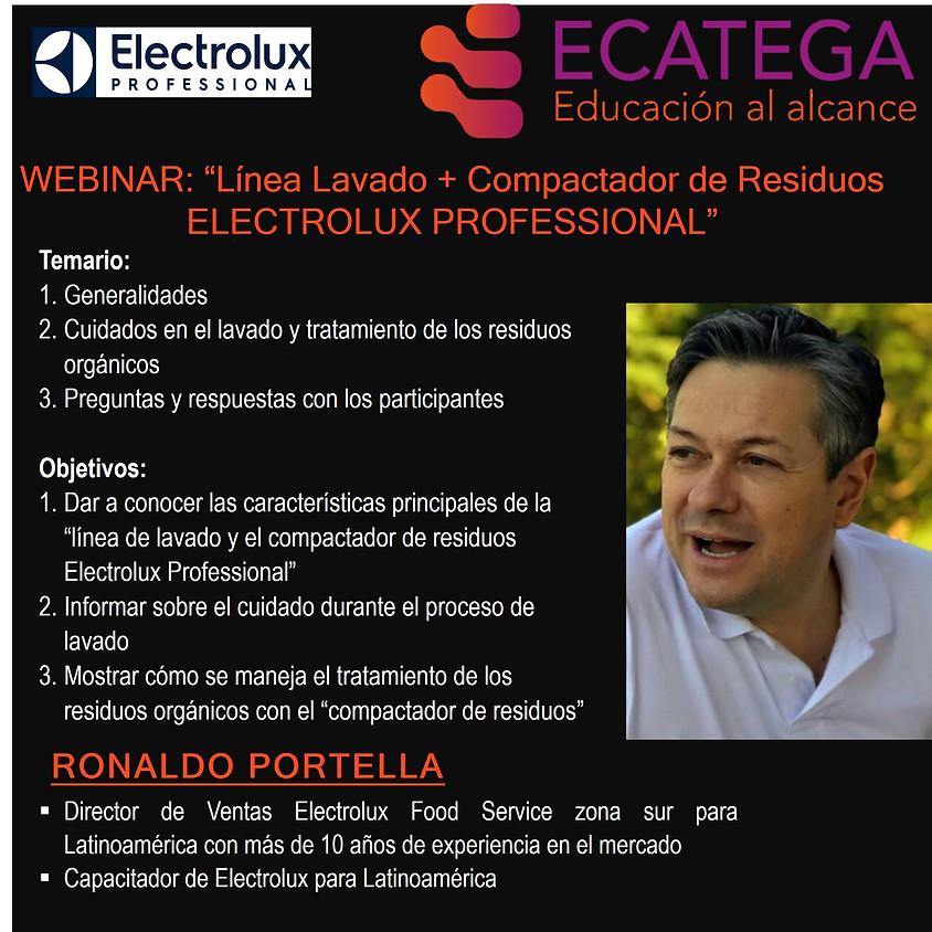 Webinar ELECTROLUX PROFESSIONAL W-I-180520