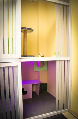 Двухэтажный люкс