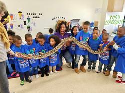 KCC Jake tha snake