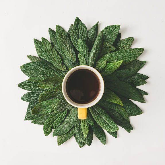 Creative minimal arrangement of green le