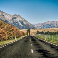 NZ1.jpg