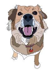 Cartoonized Dog
