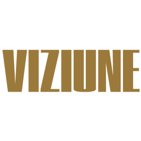 VIZIUNE.png