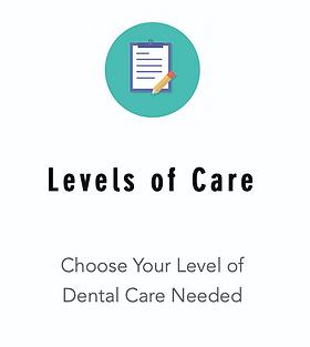 Hurst Dental Levels of Care.png
