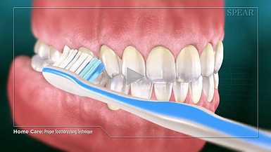 Proper Brushing Hurst dental Health.png