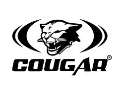 cougar_web_Mesa de trabajo 1