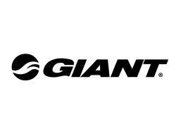 giant_web_Mesa de trabajo 1