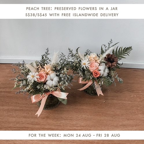 Peach Tree (24 Aug - 28 Aug)