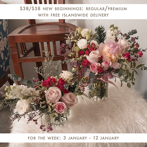 New Beginnings (3 Jan - 12 Jan)