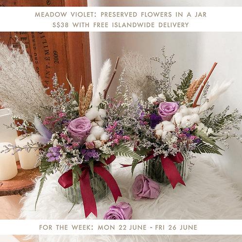 Meadow Violet (22 Jun - 26 Jun)