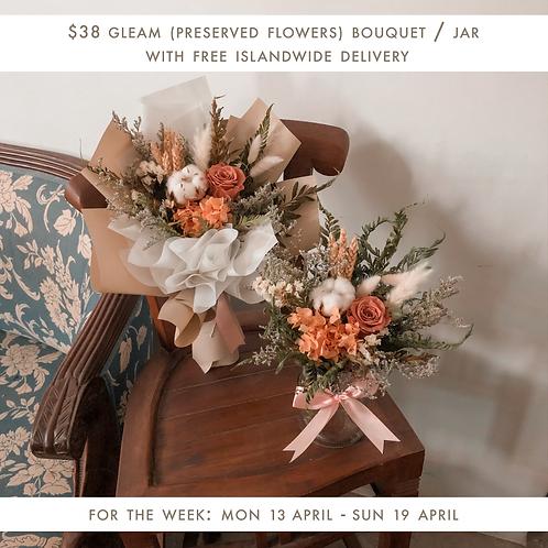Gleam Ver. 2 (13 Apr - 19 Apr)