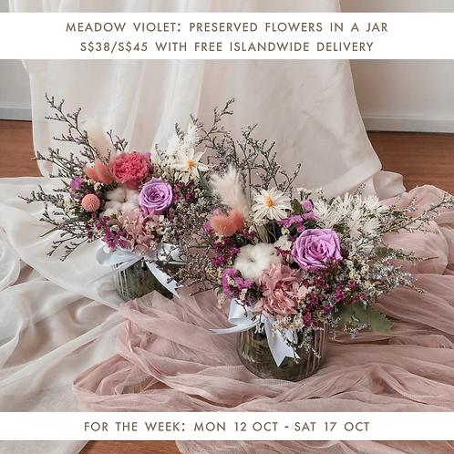 Meadow Violet (12 Oct - 17 Oct)