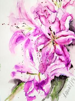 Lilien in pink