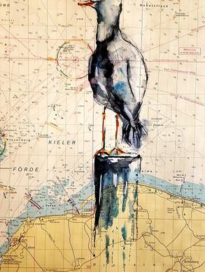 Möve auf Seekarte (Kieler Förde)