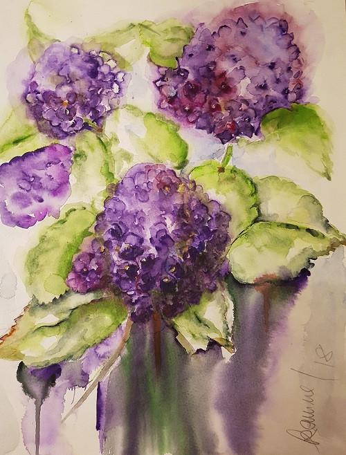 Hortensien in lila