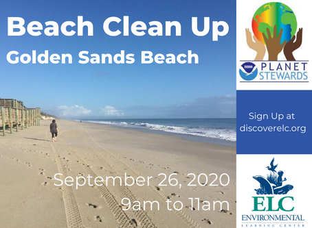 Beach Cleanup with NOAA Planet Stewards