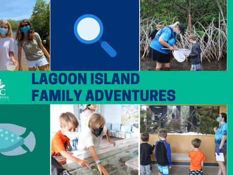 Family Activities on the Treasure Coast