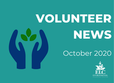 Volunteer News October