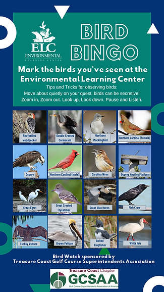 Bird Bingo Card.png