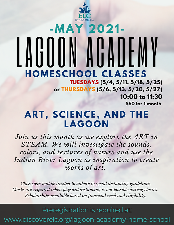 Lagoon Academy May 2021.png