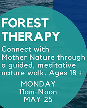 Virtual Workshop Forest Therapy.png