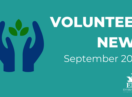 Volunteer News - September