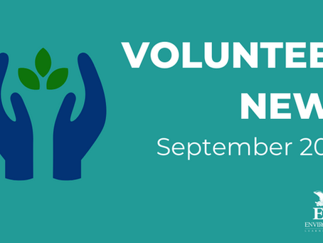 Volunteer News - September