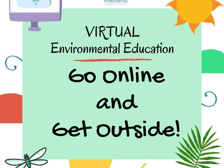 Media Making Virtual Workshop For Kids!