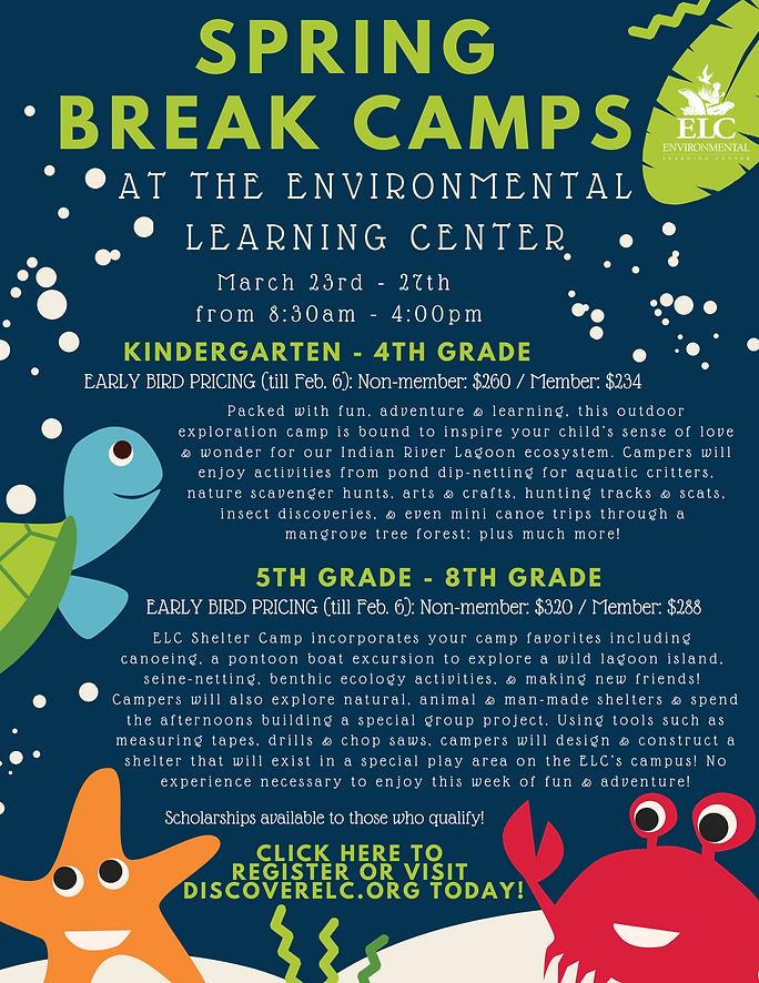 Spring Break Camps Flyer.png