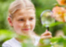 Nature Near You Kits at home STEM activi