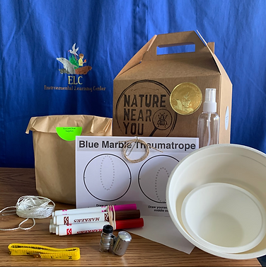 Nature Near You Bugs Kits.jpg