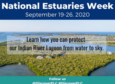 National Estuaries Week 2020