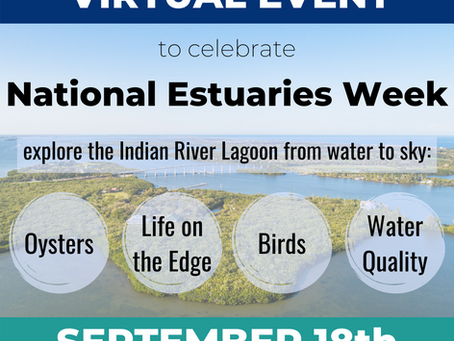 Celebrate National Estuaries Day